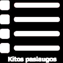 kitos_paslaugos-baltas-png